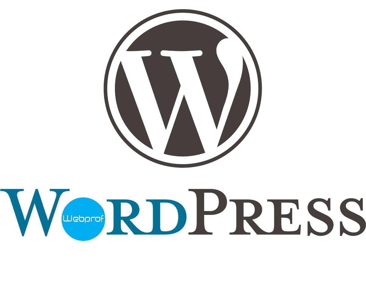 wordpress-webdesign-bureua-webprof_logo